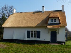 Dakkapellen en dakramen in rieten dak rieten kap ook voor bestaande